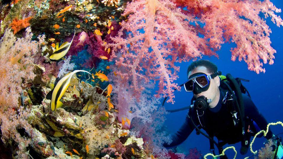 Google Street View går under vann