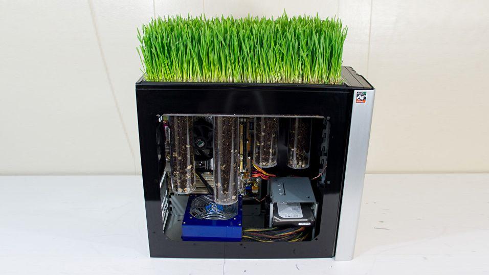 Datamaskin får planter til å gro
