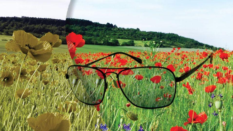 CX-brillene fra EnChroma skal la folk med rød-grønn fargeblindhet se rødt og grønt igjen.