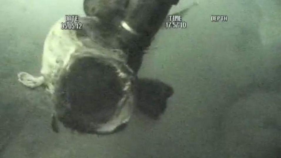 TATT: Breiflabben filmet på 340 meters dyp etter at den er fanget av armen til en ROV. Du kan se videoen nederst i saken.