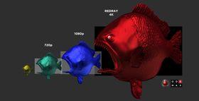 4K-fisken spiser opp de andre puslingene.