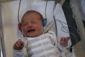 Datamaskiner skal tolke spedbarnspråk og plassere lydene inn i en større sammenheng. Dermed kan foreldre lettere forstå hva barnet vil når det for eksempel gråter.