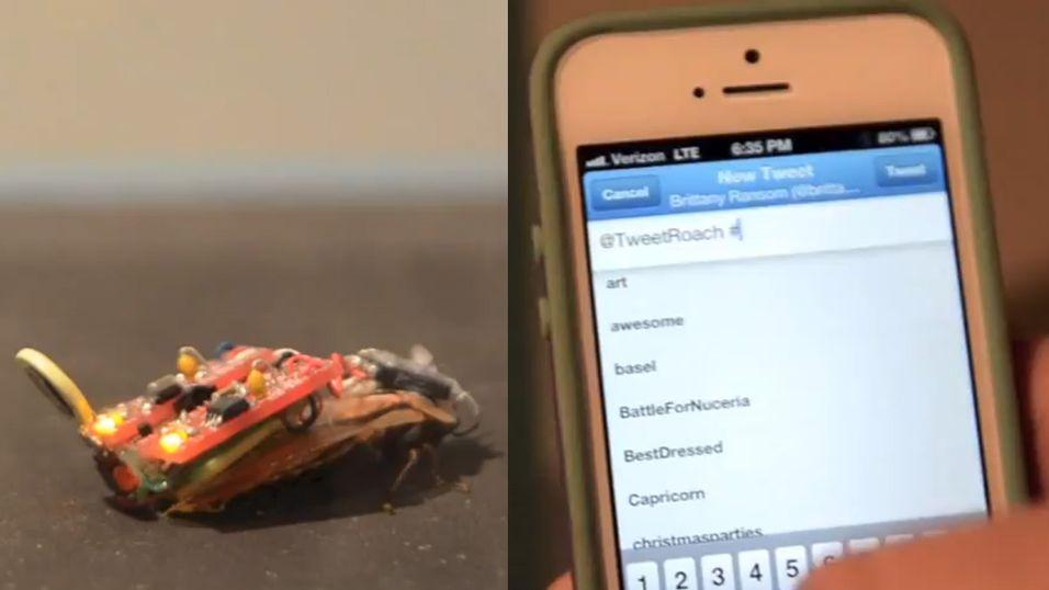 Retningen til Twitter-kakkerlakken styres via kommandoer på Twitter.
