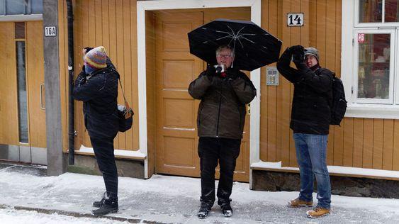 """""""Akamister i snøen,"""" tatt av Eivind Hauger på fototreff i Oslo."""
