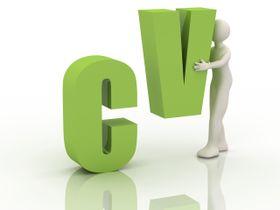 CVen din kan settes sammen på flere måter.