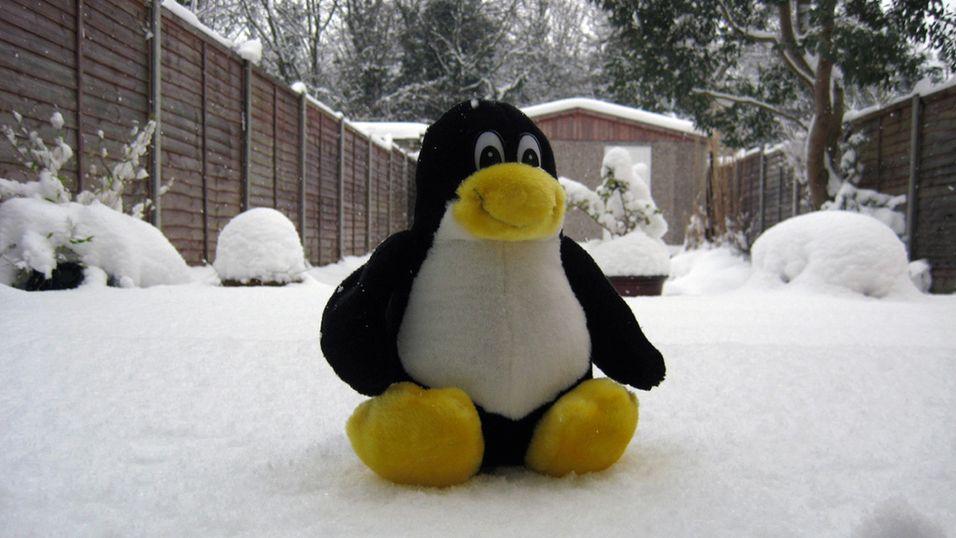 Linux, her representert ved maskoten Tux, blir skjøvet ut i kulden i Sverige.