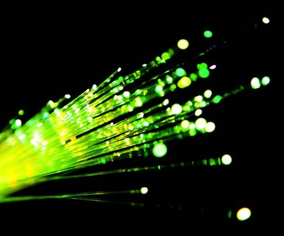 Sterk vekst i fibernettverk