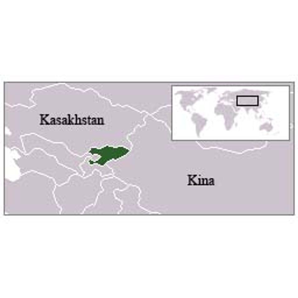 Telenor i kirgisisk krangel