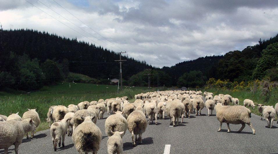 Rushtrafikken avgjørende for dugnadsånden