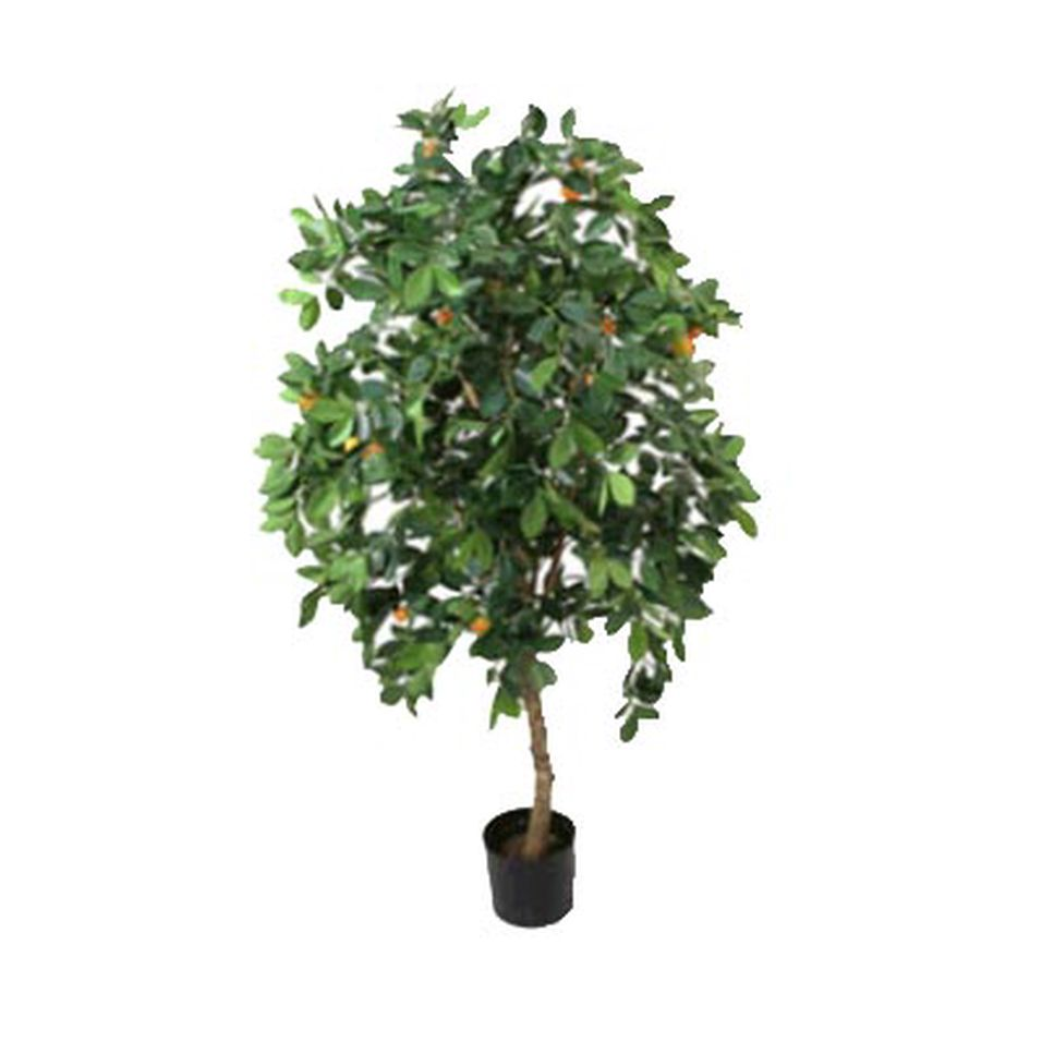 Dette treet kan følges på Twitter. Det kan også artikkelforfatteren - på  http://twitter.com/kervarec .