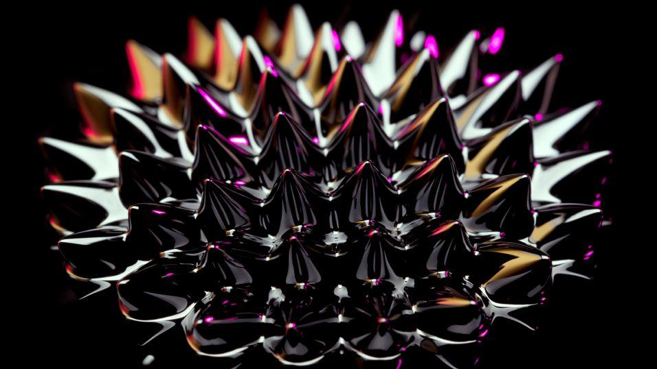 Ferrovæske danner en spektaktulær form når den blir utsatt for det magnetiske feltet til en neodymium-magnet. Neodymium er ett av jordas sjeldne stoffer, og brukes blant annet i harddisker.