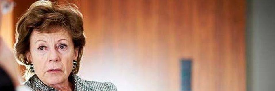 EU-kommmisær Neelie Kroes styrker ordbruken rundt betydningen av ett telemarked i Europa.