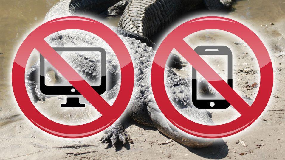 Florida bannlyser smarttelefoner og PC-er