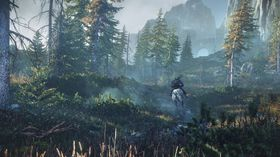 The Witcher 3: Wild Hunt vil by på store og frodige område.