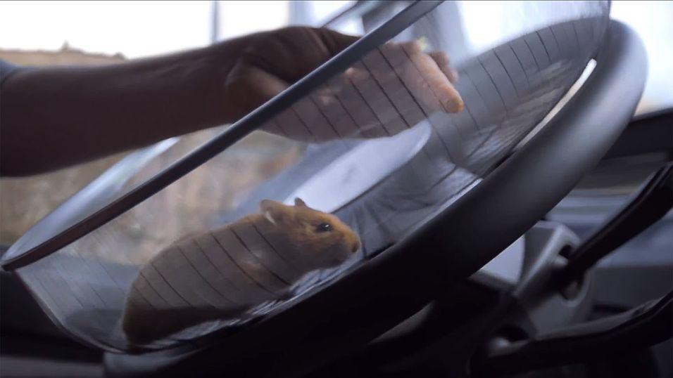 Her styrer en hamster en diger lastebil