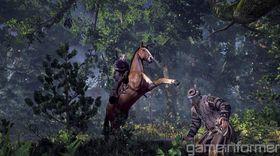 The Witcher 3. (Bilde: Game Informer)