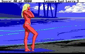 Leisure Suit Larry 3.