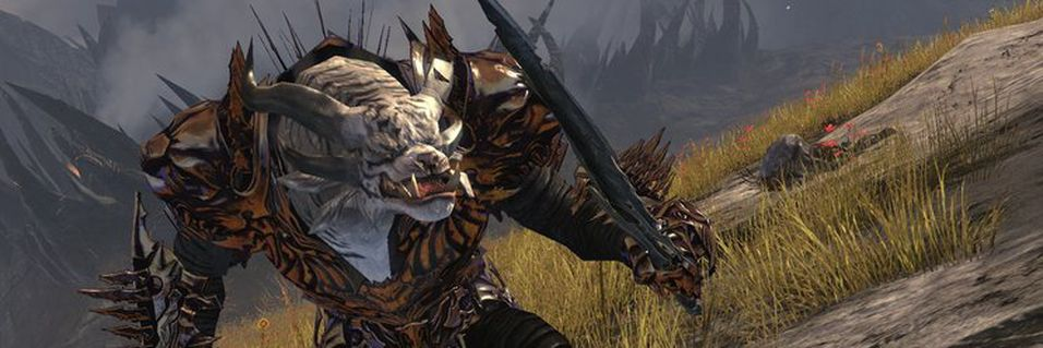 Guild Wars 2 kan komme på konsoll