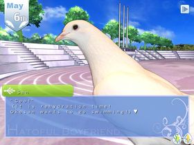 Hatoful Boyfriend (PC).