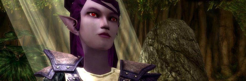 Dungeons & Dragons Online vokser