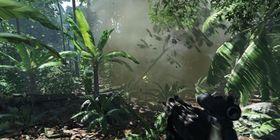 Så pent kan Crysis være til PC.