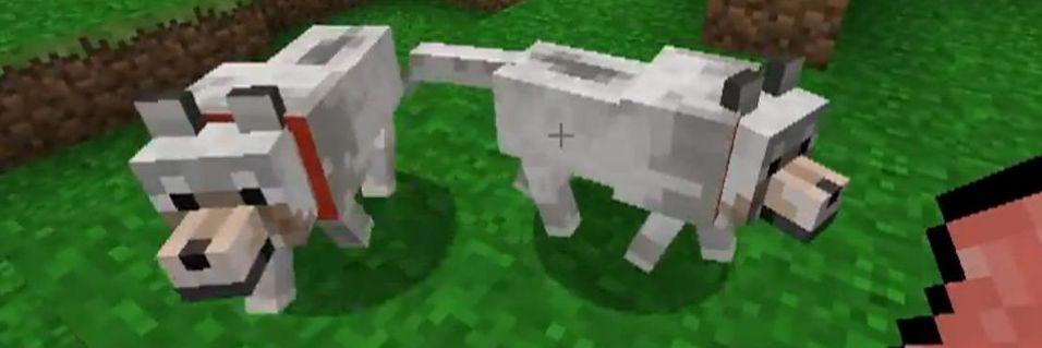 Ulver i Minecraft