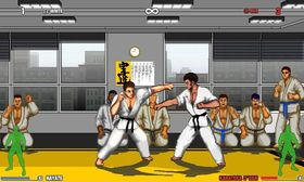 Karate Master Knock Down Blow (PC).