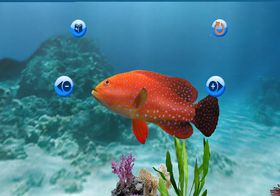My Aquarium (Wii og PS3).