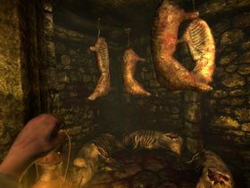 Amnesia: The Dark Descent (PC, Mac og Linux).