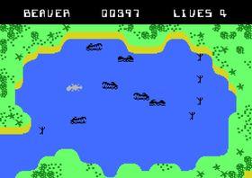 Bever vs. krokodiller. Den urgamle kampen.
