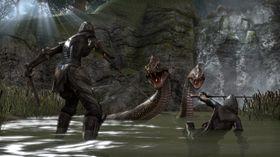 The Elder Scrolls Online prøver å ha et mer actionpreget kampsystem.