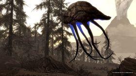 De som begynte Elder Scrolls-serien med Skyrim vil nok sperre øynene opp over bull netch-skapningene.