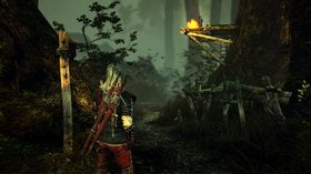 The Witcher 2. Assassins of Kings.