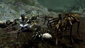 Ah, edderkoppar. Min favoritt. Kva er vel eit spel utan?