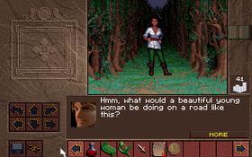 Jeg koste meg nylig med deg klassiske Westwood-rollespillet Lands of Lore.
