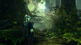 The Witcher 2.