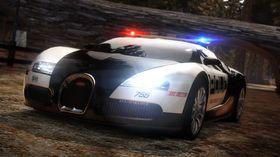 Typisk politibil.