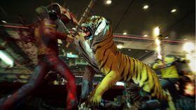 Sjå! Ein tiger!