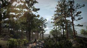 Det tredje området vi får besøke er de dype nordamerikanske skogene.