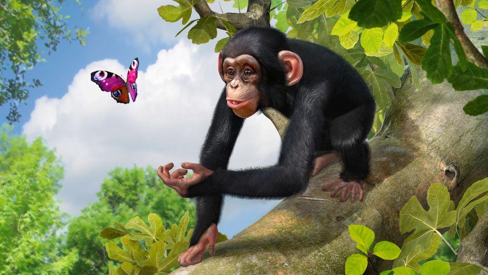 SNIKTITT: Zoo Tycoon
