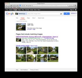 Slik ser omvendt bildesøk ut på Google.