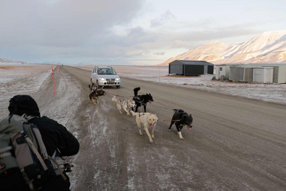 Slik lufter man hunder på Svalbard når det er kaldt?