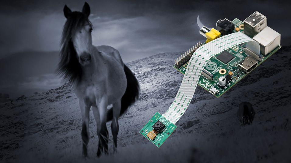 Raspberry Pi med IR-kamera