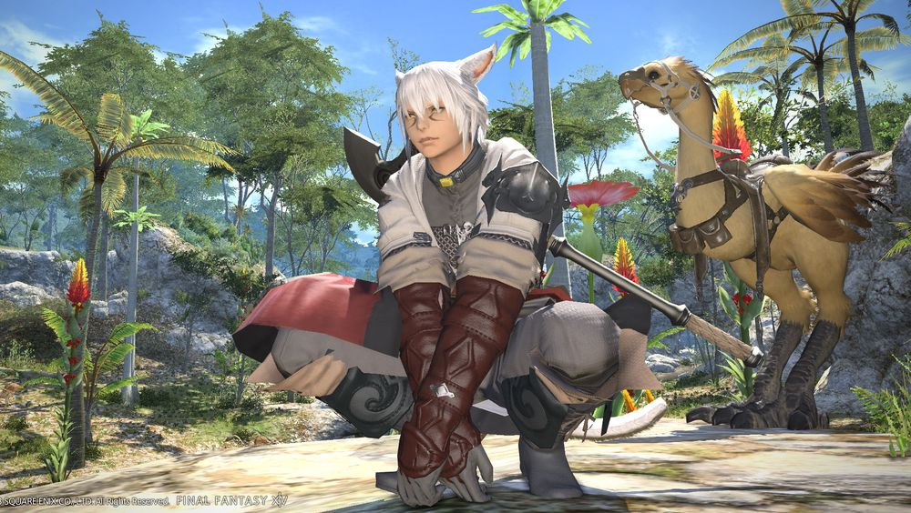 ANMELDELSE: Final Fantasy XIV: A Realm Reborn