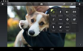 Camera Awesome er svært sosial, og støtter en rekke nettsteder.