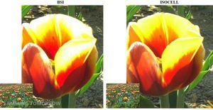Her er det zoomet inn på en detalj i bildet. Bildet tatt med Isocell-teknologi (til høyre) er noe skarpere, og mindre  utbrent enn bildet tatt med BSI-brikken.