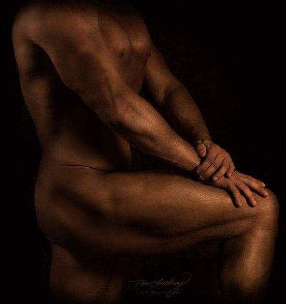"""""""The Body"""" - November."""
