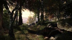 Skjermbilde fra The Vanishing of Ethan Carter.