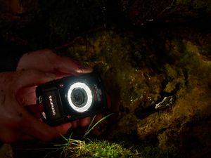 Makrofotografering med LED-lys.