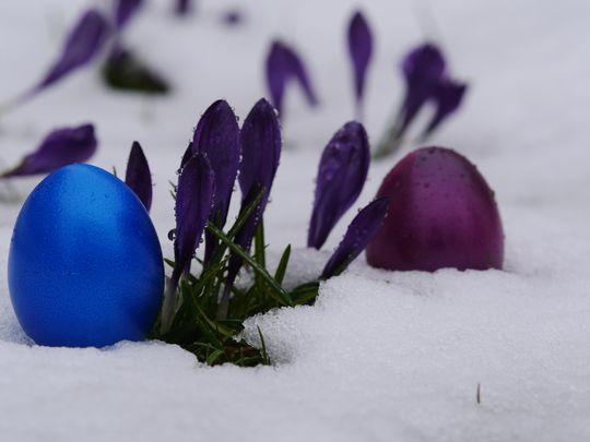 Grå snø kan fort bli resultatet om kameraet får bestemme selv.